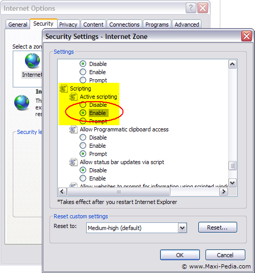 Internet Explorer setting - enable Active Scripting